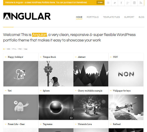 21-Angular-portfolio-wp-themes