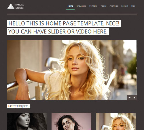 22-Triangle-portfolio-wp-themes