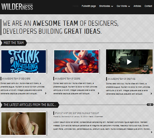 27-Wilderness-portfolio-wp-themes