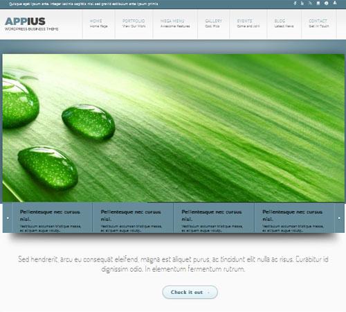 29-Appius-portfolio-wp-themes
