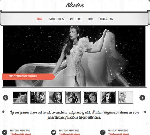 35-Novica-portfolio-wp-themes
