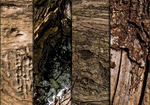 5-Wood Textures