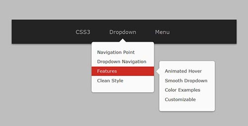 CSS3 Animated Drop-Down Navigation