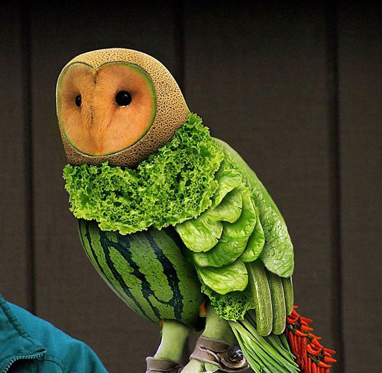 8-Fruit-Owl