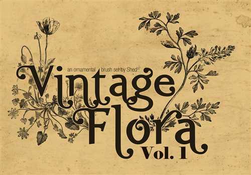 Vintage Flora Brushes Vol. 1