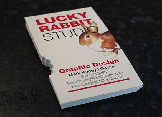 40-Lucky-Rabbit-Studio-Business-Cards