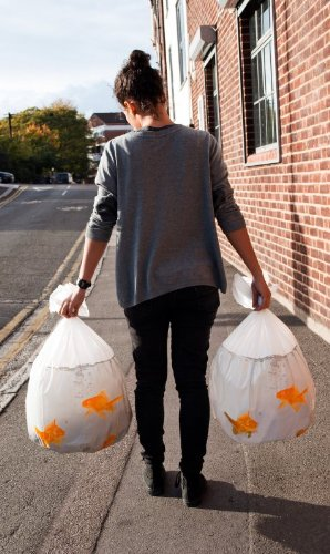 29. Suck UK Goldfish Bin Bags