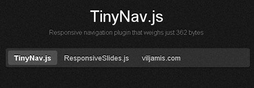 TinyNavjs