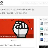 Wordpress-Themes-Responsive-45