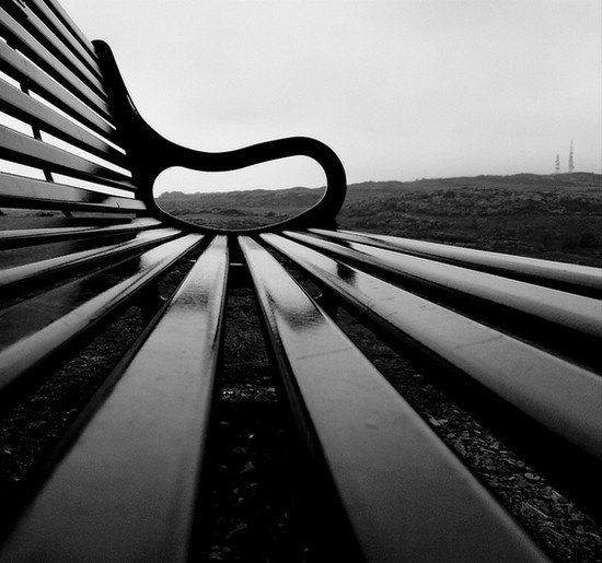 Blackford Bench