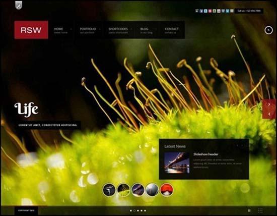 17-Responsive Fullscreen Studio for WordPress