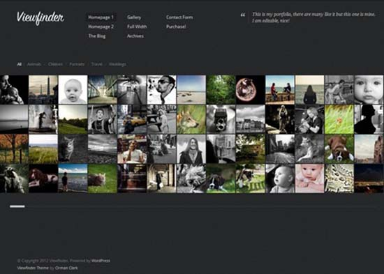 20-Viewfinder WordPress gallery theme