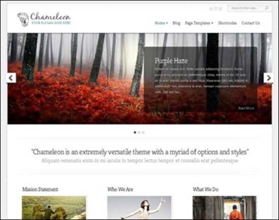 21-Chameleon WordPress Portfolio Theme