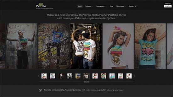 25-PicTree WordPress Gallery Theme