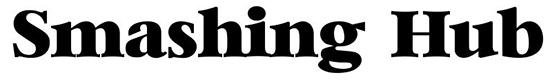 free-serif-fonts-8