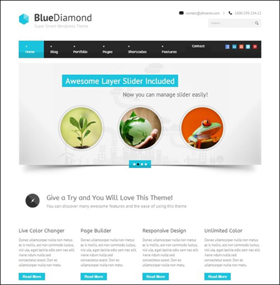 Freebusinesstheme29