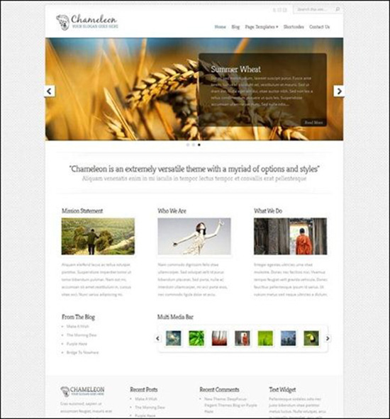 Freebusinesstheme30
