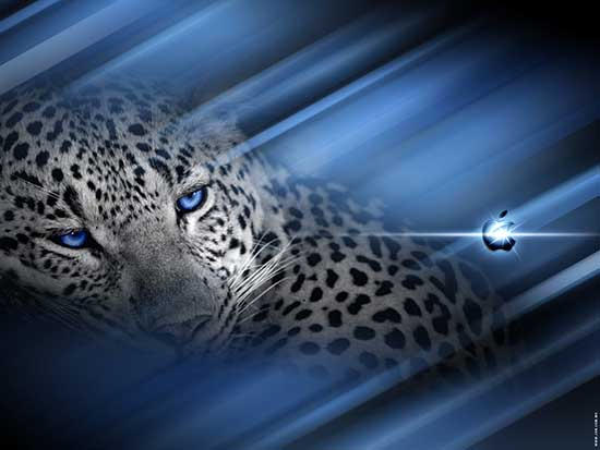 snow_leopard_wallpaper_12