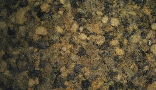25-brown-sponge-texture
