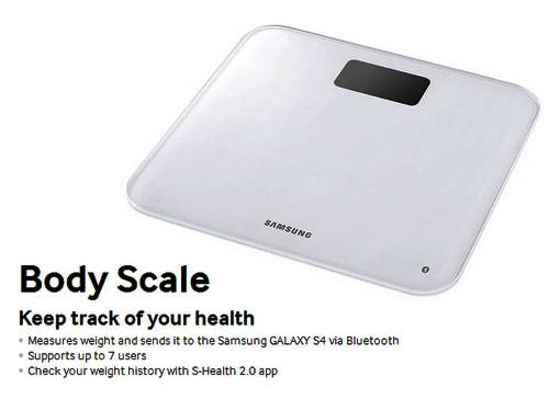 6. Body Scale