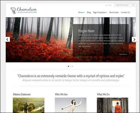 Chameleon WordPress Portfolio Theme