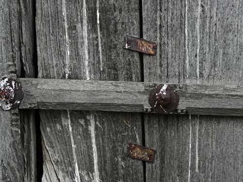 woodtexture-10