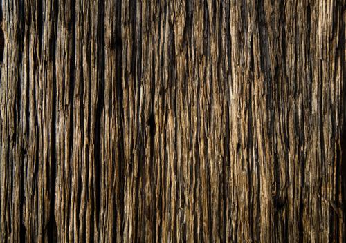 woodtexture-27