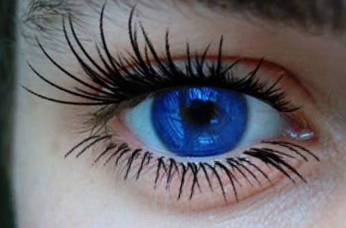 Eyelash-Brushes-2