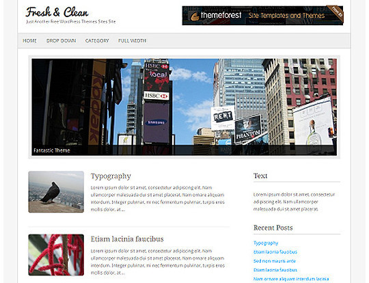 HTML5 Minimal WordPress Theme