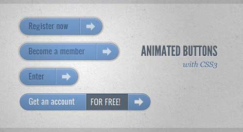 CSS3 Animated Buttons