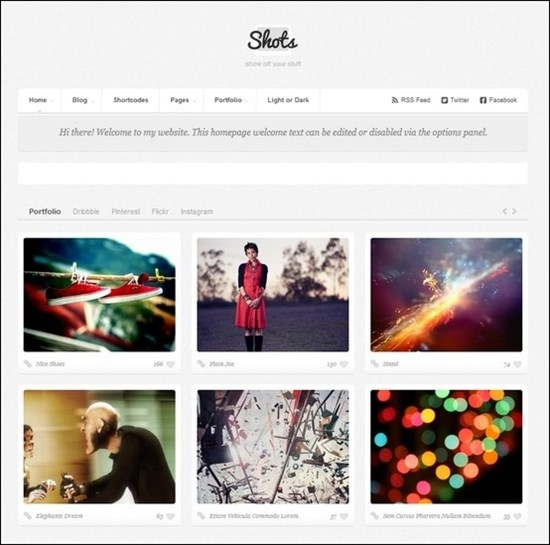 wordpress-grid-theme-16