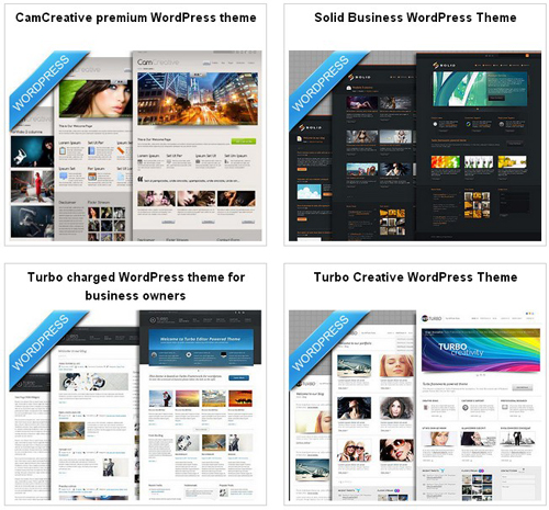 Professional-Wordpress-Themes