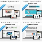 Wordpress-eCommerce-themes