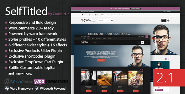 best responsive wordpress ecommerce themes 2013