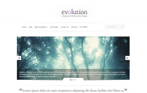 minimal-wordpress-theme-14