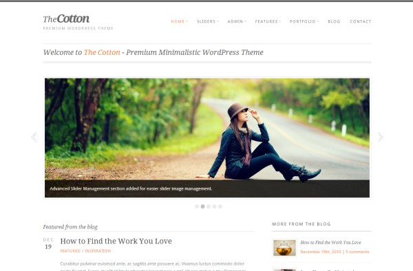 minimal-wordpress-theme-7