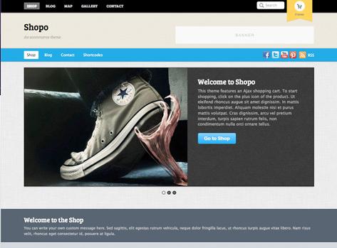premium ecommerce wordpress theme from themify