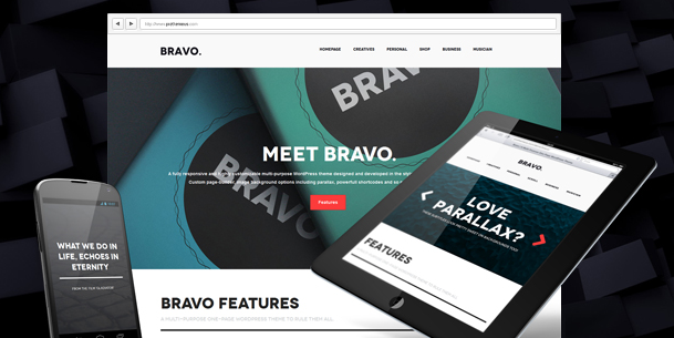 bravo landing page wordpress themes