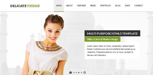 delicate full screen business wordpress theme