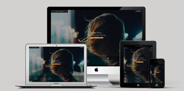 full screen business wordpress theme