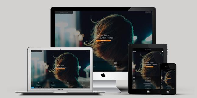 full screen business wordpress theme