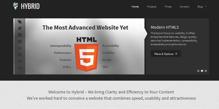 hybrid one page wordpress theme