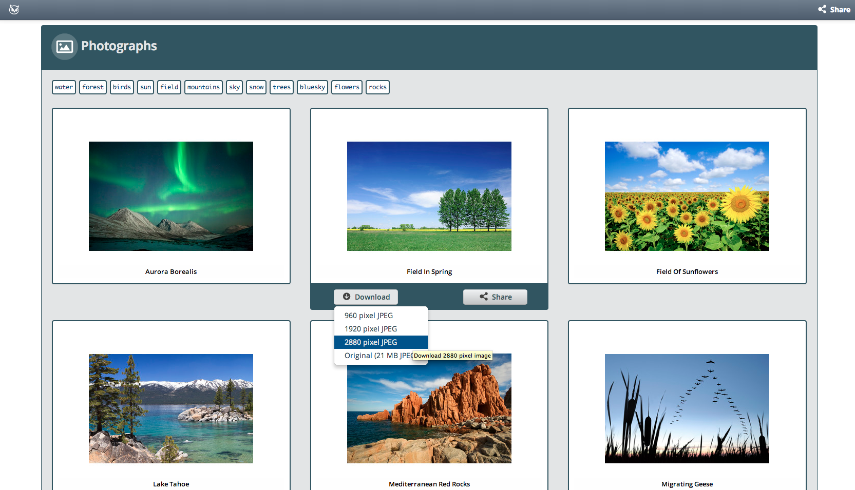 image management tool review 4