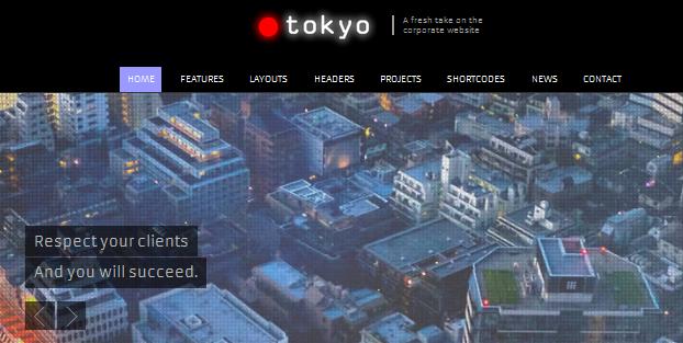 toyko full screen business wordpress theme