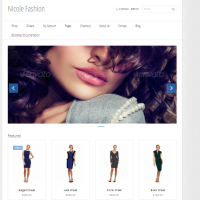 bootstrap 3 ecommerce template 3