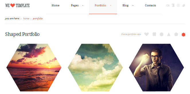 hexagon wordpress theme 7