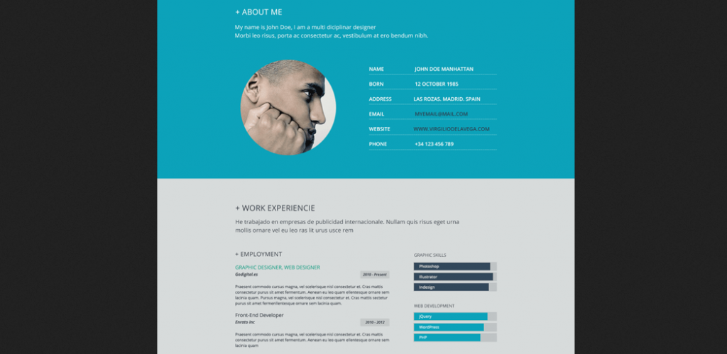 11 Beautiful Flat Resume Design  Resume Website Design