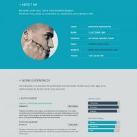 Flat resume design 1