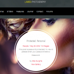 flat photography wordpress themes 1
