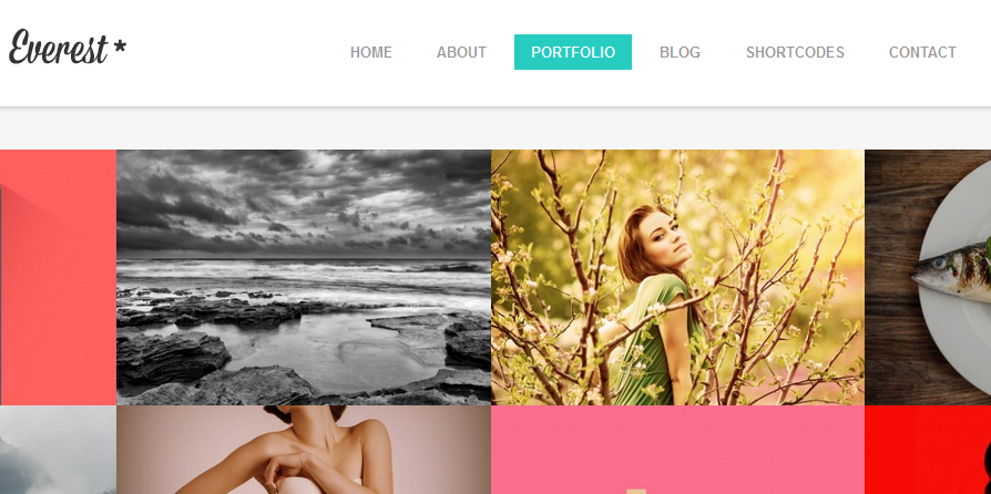 flat photography wordpress themes 10